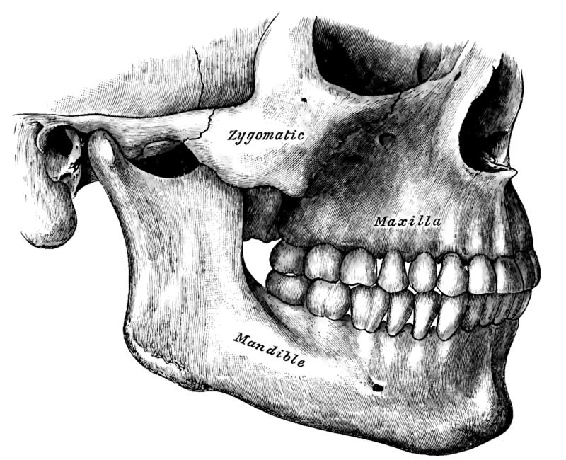Temporomandibular Disorder